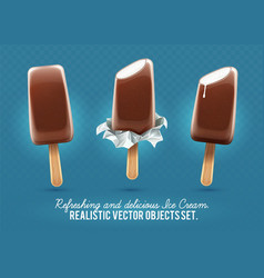 ice-cream chocolate vanilla vector image vector image