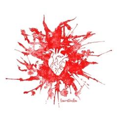Watercolor heart in red splash vector image