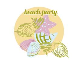 sea elements starfish palm seashell vector image