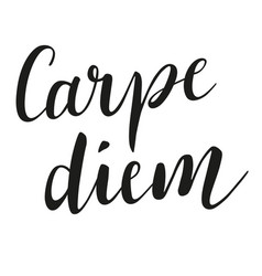 carpe diem brush script modern calligraphy vector image vector image