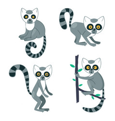 Lemur cute set funny animal characters with vector