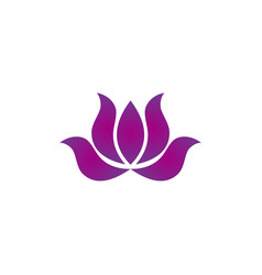 lotus beauty business logo vector image