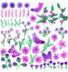 Watercolor set with leaves flowers birds vector image