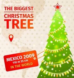 Infographic The biggest Christmas tree vector image