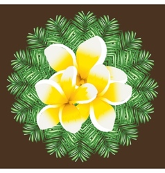 Plumeria seamless pattern palm leaves background vector image