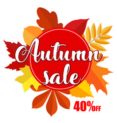 bright banner for autumn sale on white background vector image