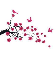 cherry bird vector image