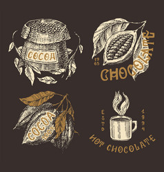 Cocoa beans and chocolate fruit and bag vintage vector