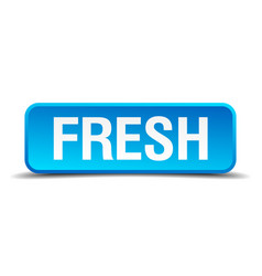 Fresh blue 3d realistic square isolated button vector