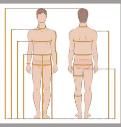 Man body measurement vector