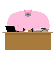 pig boss piglet businessman at desk farm office vector image