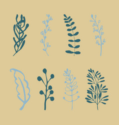 set of vintage ornaments with floral elements for vector image