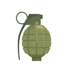 pineapple hand grenade military weapon vector image vector image