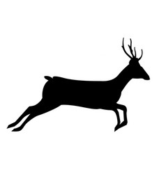 Black silhouette of running reindeer isolated on vector