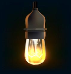 christmas lights bulb decoration on dark vector image