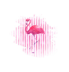 flamingo on watercolor pink striped background vector image