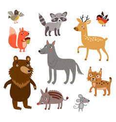 Forest animals set vector
