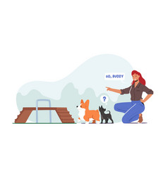 happy woman training dogs in park outdoor area vector image