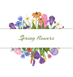 Spring flowers floral card with garden flowers vector