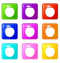 black apple set 9 vector image vector image