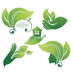 collection of green leaf images vector image vector image