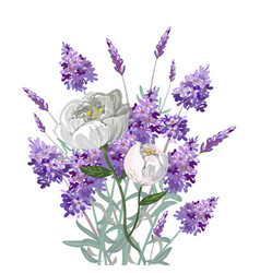 Lavender and peony bouquet vector
