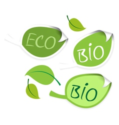 bio leaf vector image