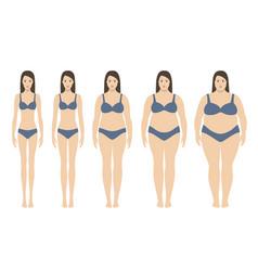Body mass index vector