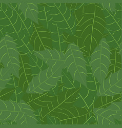 branch of holly with leaves seamless pattern vector image