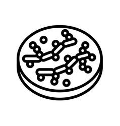 Candida bacteria line icon vector