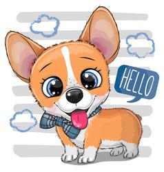 Cartoon dog corgi with a bowtie vector