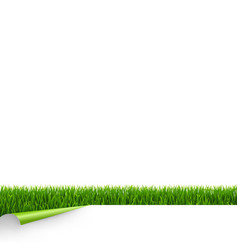 green grass border with white paper and corner vector image