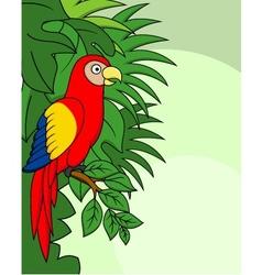 Macaw cartoon vector image vector image