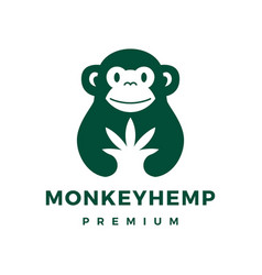 monkey cannabis hemp logo icon vector image