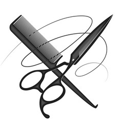 scissors comb and curl hair vector image