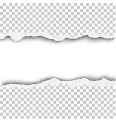 Snatched horizontal lane with torn edges in sheet vector