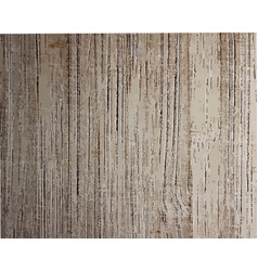wooden texture for your design trace wooden vector image