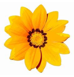 Yellow Flower Head vector image