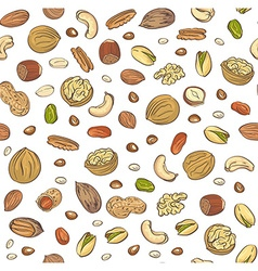 seamless pattern hand sketched nuts on white vector image