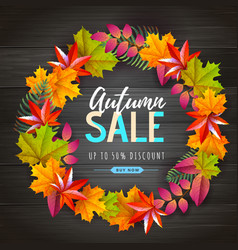Autumn big sale typography poster with autumn vector