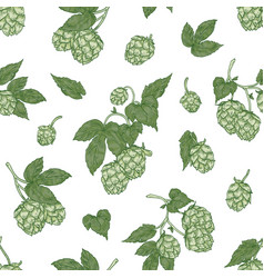 botanical seamless pattern with fresh organic hop vector image
