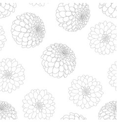 Dahlia flower outline white background vector