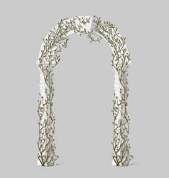 Ivy on marble arch vines with green leaves on arc vector