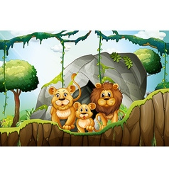 Lion family living in the jungle vector image
