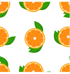 orange fruit seamless with leaf high detailed vector image