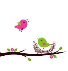 Cute spring nesting birds isolated on white vector image vector image