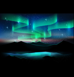 Aurora sky and a lot stars on lake background vector
