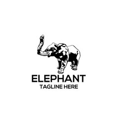 elephant silhouette logo template vector image