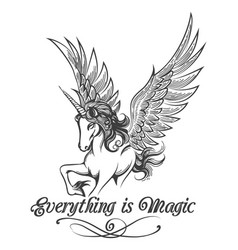 hand drawn winged unicorn vector image