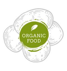 label potato fresh natural eco food hand drawn vector image